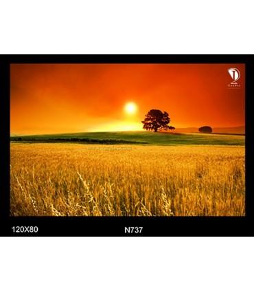 تابلو طرح غروب آفتاب کد N737