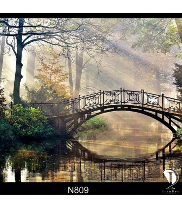 تابلو طرح بازتاب پل در رودخانه کد N809